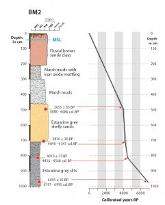 BM2 sedimentary profile and age–depth model interpo- lated curve. Dates on the core obtained via radiocarbon dating (for method and age detials, please see the paper). From B. Gambin et al. (2016).