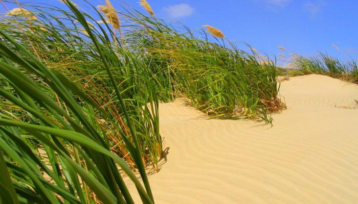 Imaggeo on Mondays: Coastal erosion