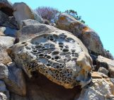 Imaggeo on Mondays: the rocks that look like Swiss cheese