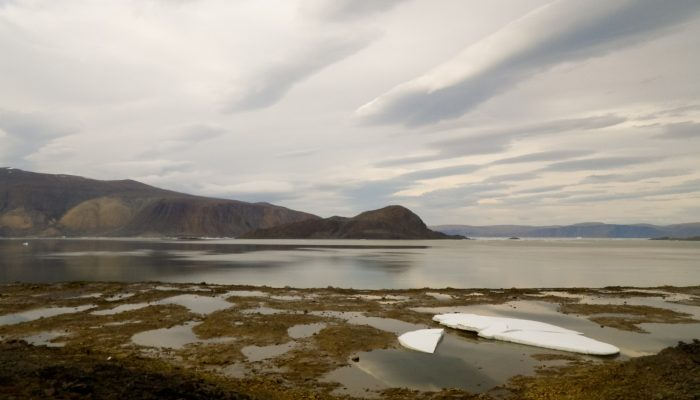 Imaggeo on Mondays: Low tide at Alexandra Fjord