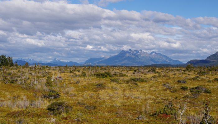 Imaggeo on Mondays: The unique bogs of Patagonia