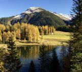Imaggeo on Mondays: Autumnal Larch