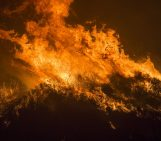 Wildfires in the wake of climate change