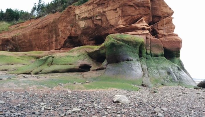 Imaggeo on Mondays: A modern cliff hides ancient dunes