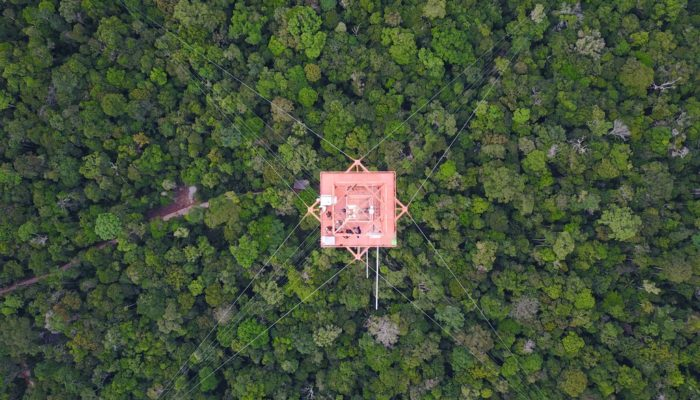Imaggeo on Mondays: Science above the Amazon rainforest