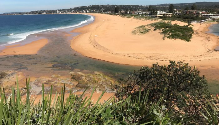 Back for the first time: measuring change at Narrabeen–Collaroy Beach