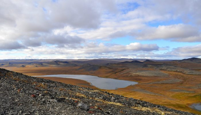 Imaggeo on Mondays: The surprising beauty of the Arctic tundra