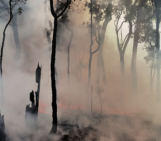Imaggeo on Mondays: Setting trees aflame to understand the carbon balance of fires