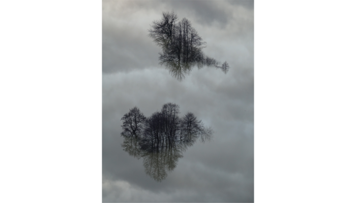 Imaggeo On Monday: Reflections in floodwater