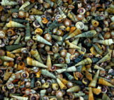 Imaggeo On Monday: A drift of sea-snail shells