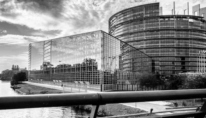 GeoPolicy: How do Members of European Parliament learn about science?