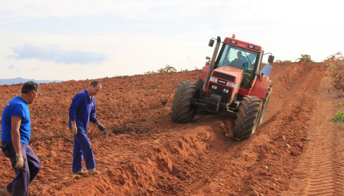 Geosciences Column: The World's Soils are under threat