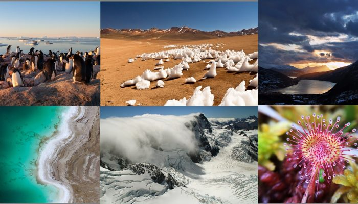 Photo Contest finalists 2017 – who will you vote for?