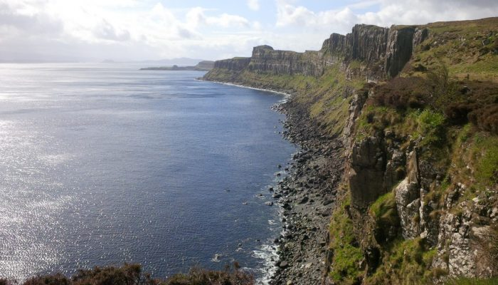 Imaggeo on Mondays: A spectacular view of moss-covered rocks