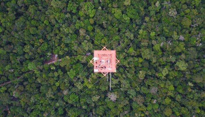 Imaggeo on Mondays: Science above the Amazon rainforest