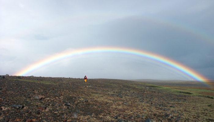 LGBTQIA+ in the field