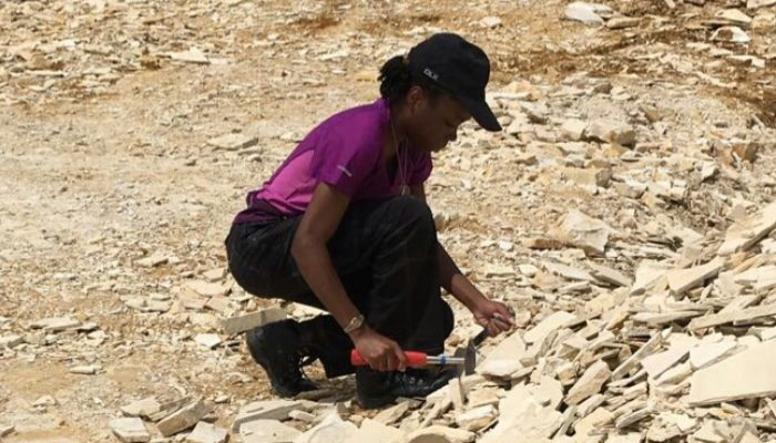 GeoTalk: Nadine Gabriel, creator of #AreYouSiO2? and Assistant Curator of Fossil Mammals.
