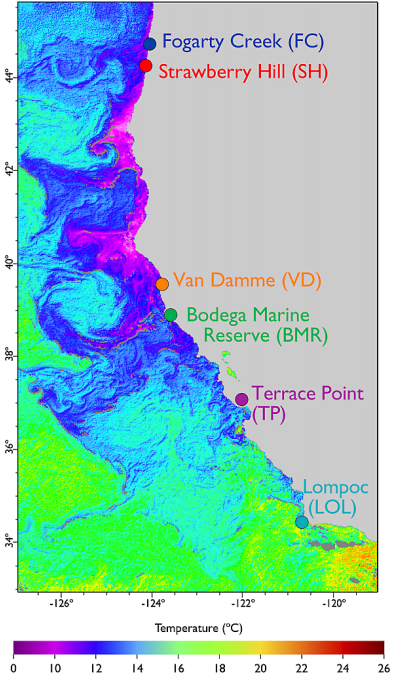 The California Current Large Marine Ecosystem, showing the sites monitored by OMEGAS for changes in the region's biology and chemistry. Seawater is coloured according to temperature and land is shown in grey. (Credit: Hoffman et al., 2014)