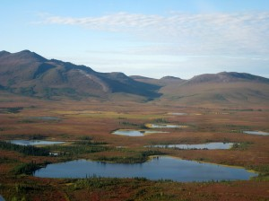 Permafrost and Arctic lakes of the Kobuk River valley, Alaska. Source - 16Terezka, Wikimedia Commons.