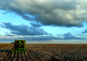 800px-Agriculture_in_Brazil