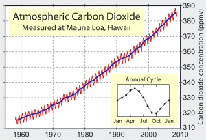 Atmospheric CO2 concentrations measured at Mauna Loa, Hawaii - Source:  Robert A. Rohde, Wikimedia Commons.