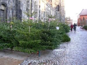 800px-Julgransförsäljning_utanför_Lunds_domkyrka