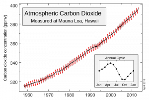 The Keeling Curve: Atmospheric CO2 concentrations as measured at Mauna Loa Observatory. Source - Narayanese, Wikimedia Commons
