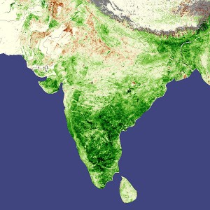 India is a very green and wet country courtesy of its regular monsoons but poor management and overexploitation has left is with problems with water scarcity. Source - Wikimedia Commons