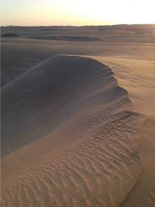 Sand dunes in the Great Sand Sea. Image Author's Own.