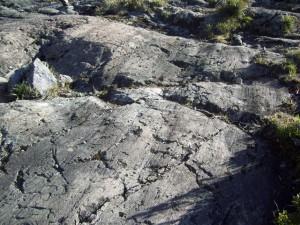 Striated bedrock near Cerro Chirripó. Photo courtesy of Scott Schillereff.