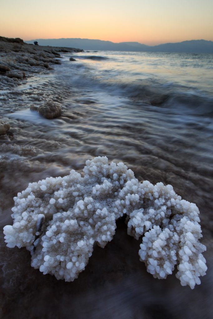 Walking along the shoreline of the Dead Sea, you can find some magnificent objects, like this coral made of salt. Combine that with the beautiful scenery and amazing lighting at dawn and you get this amazing photo. Source - Salt Coral by Zachi Shtain