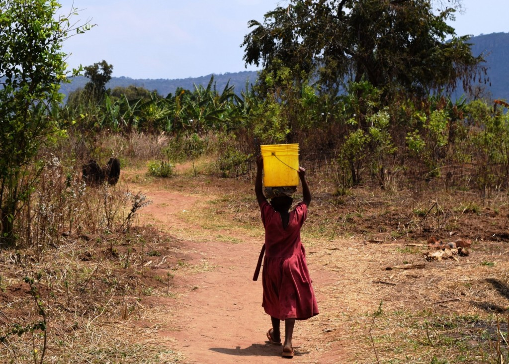 Daily collection of water in Tanzania (2014)