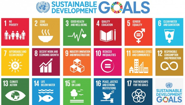 Geology and the Sustainable Development Goals