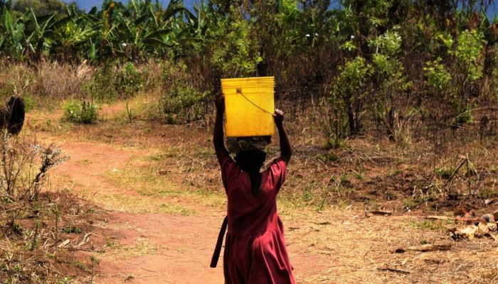 Bárbara Zambelli Azevedo: Access​ ​to​ ​clean​ ​water,​ ​gender​ ​equality​ ​and​ ​geosciences