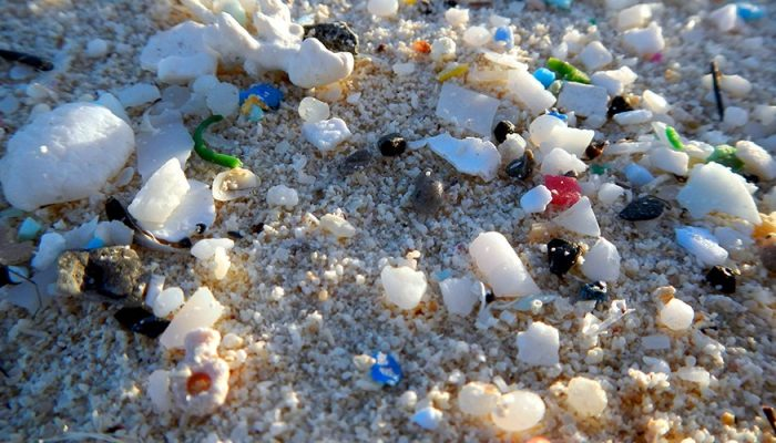 Robert Emberson: Microplastic – Too Important to Ignore