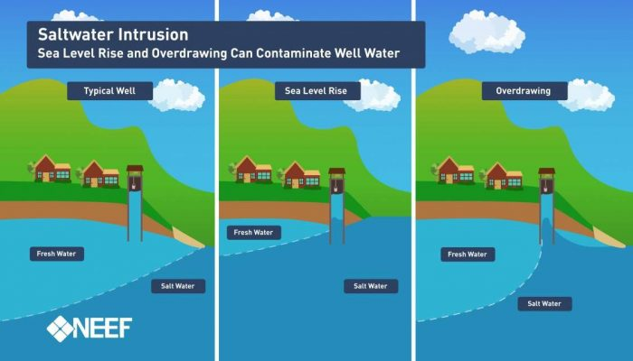 Saltwater intrusion: causes, impacts and mitigation