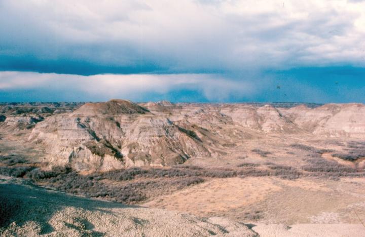 The wonderful Dinosaur Park Formation of Alberta, Canada
