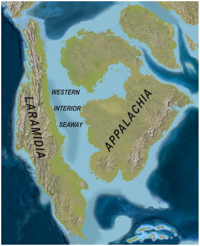 North America during the Late Cretaceous, or 50 years time.