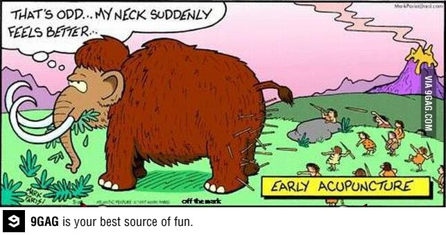 Did early acupuncture drive the mammoths to extinction..? (source)