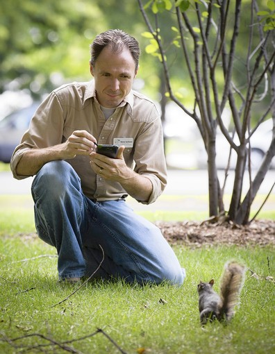 Citizen science with squirrels! Just for Lou and Eva, to see if they actually ever read this ;) (source)