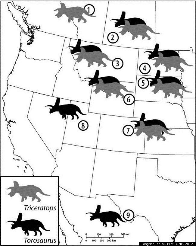 Distribution of Torosaurus and Triceratops specimens in North America (source)