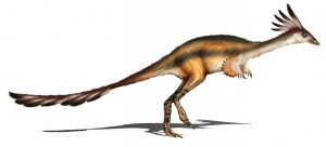 Alvarezsaurus, with its teeny little claws! (source)