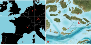 All known atoposaurid localities in the Late Jurassic of Europe, based on modern and Jurassic geography. See the paper for locality details!