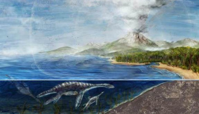 How fast was the demise of the dinosaurs?