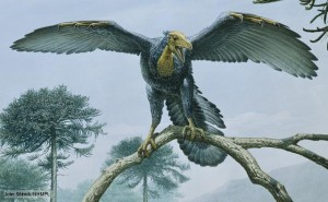 One of the earliest known birds, Archaeopteryx, from the infamous Solnhofen beds of Bavaria, Germany. (source)