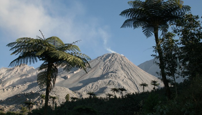 Santiaguito Volcano: Ninety Years and Counting.