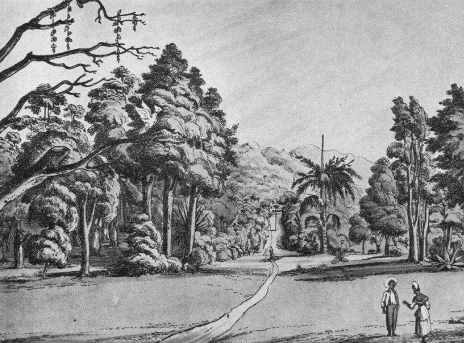 Central walk 1824