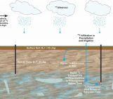 Tracking the Fallout and Fate of Fukushima Iodine-129 in Rain and Groundwater