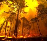 Fire and groundwater